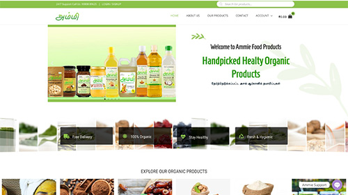 website-cube-technologies-professional-website-design-ammie-food-products